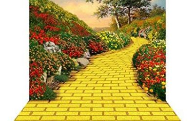 Walking the Yellow Brick Road to Healing